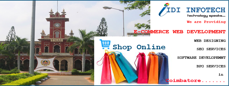 E-Commerce Web Development in Coimbatore