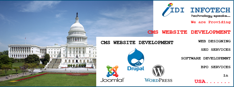 CMS Website Development in USA